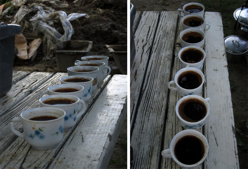 23 modul II Popovica kafe nikad dosta