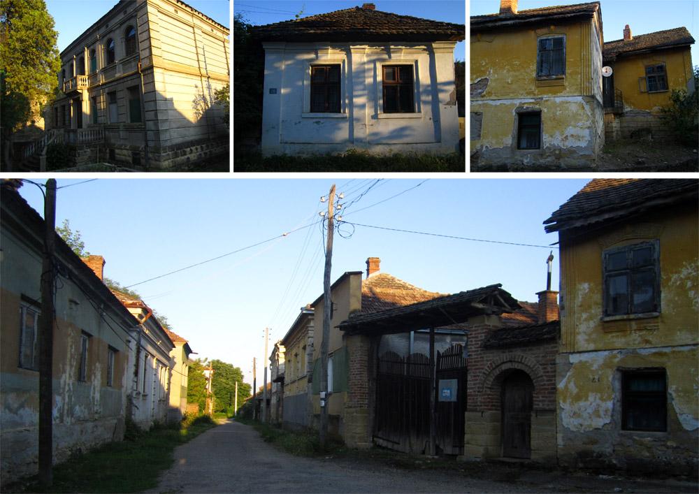 41 selo rogljevo