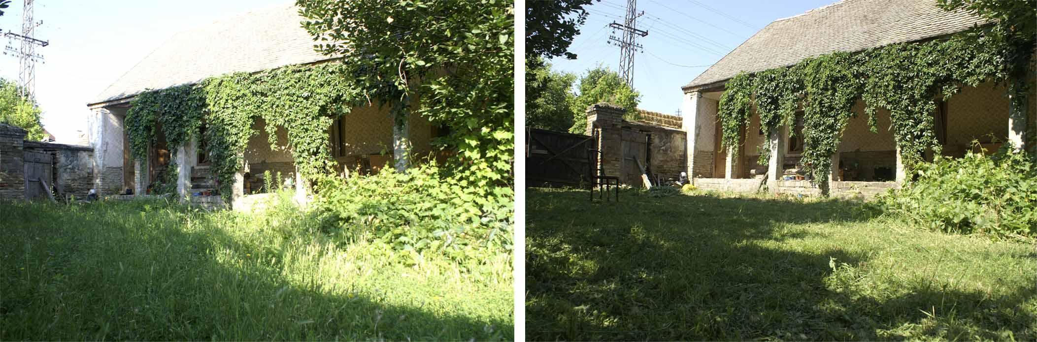 08 pre i posle dzungle
