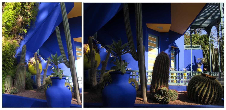 213 a majorelle park Marrakesh