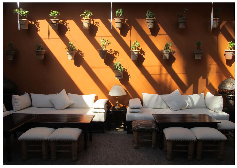 213 majorelle park Marrakesh