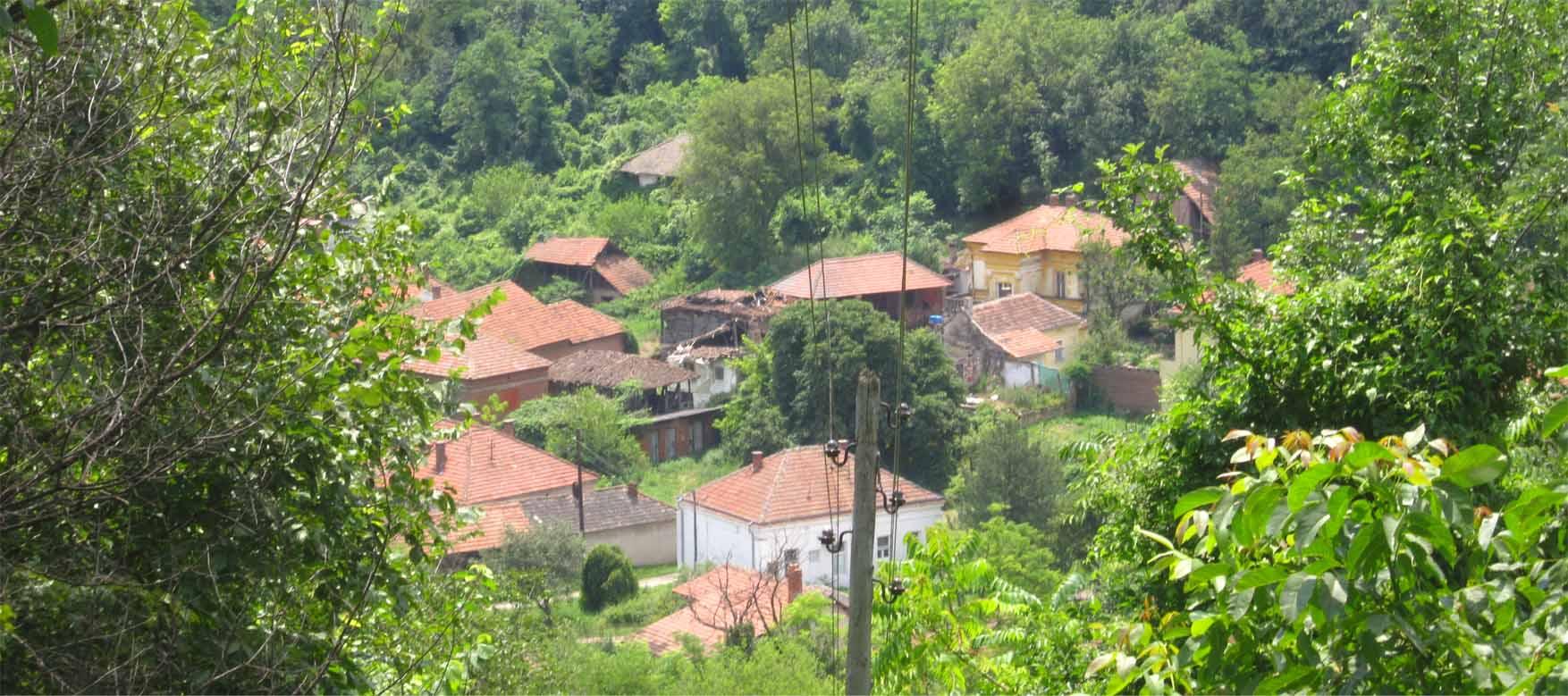 00 Rogljevo selo