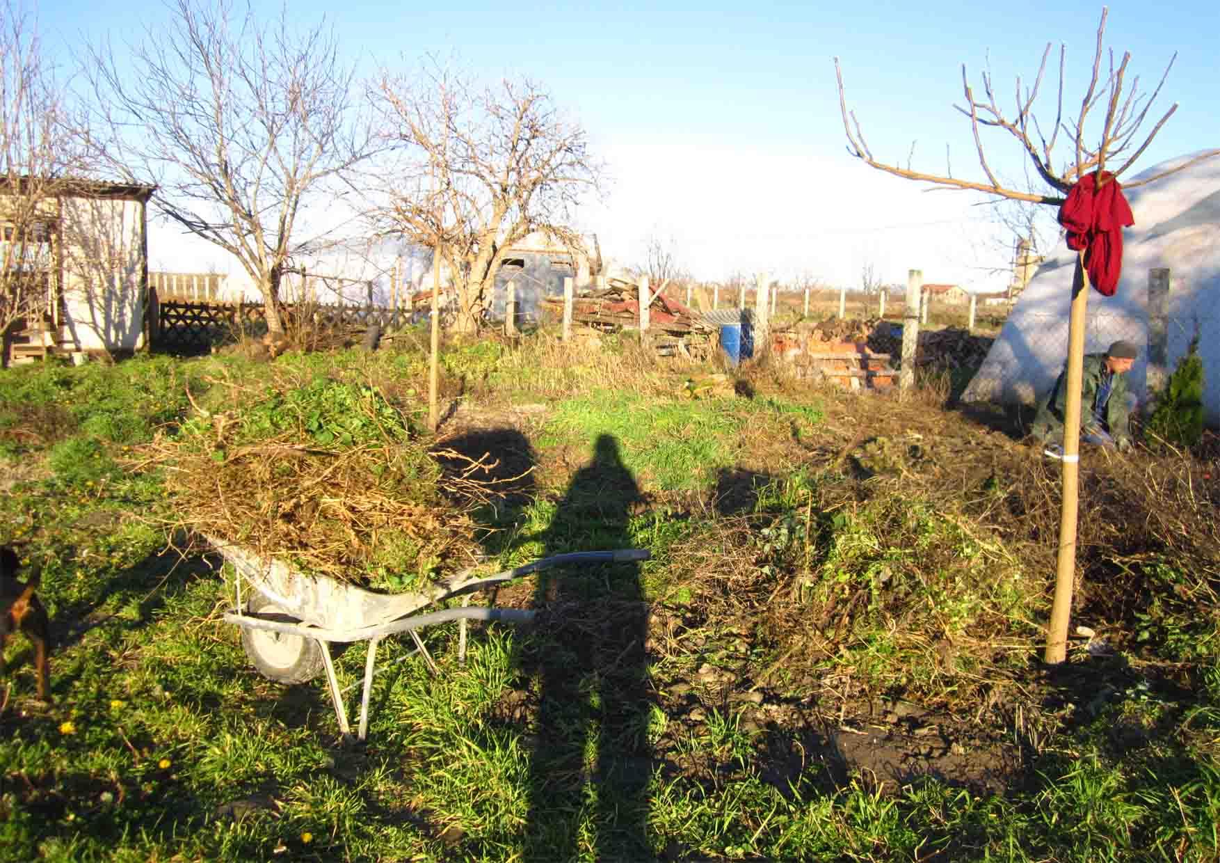 08 Mosorin decembar sadjenje tuja