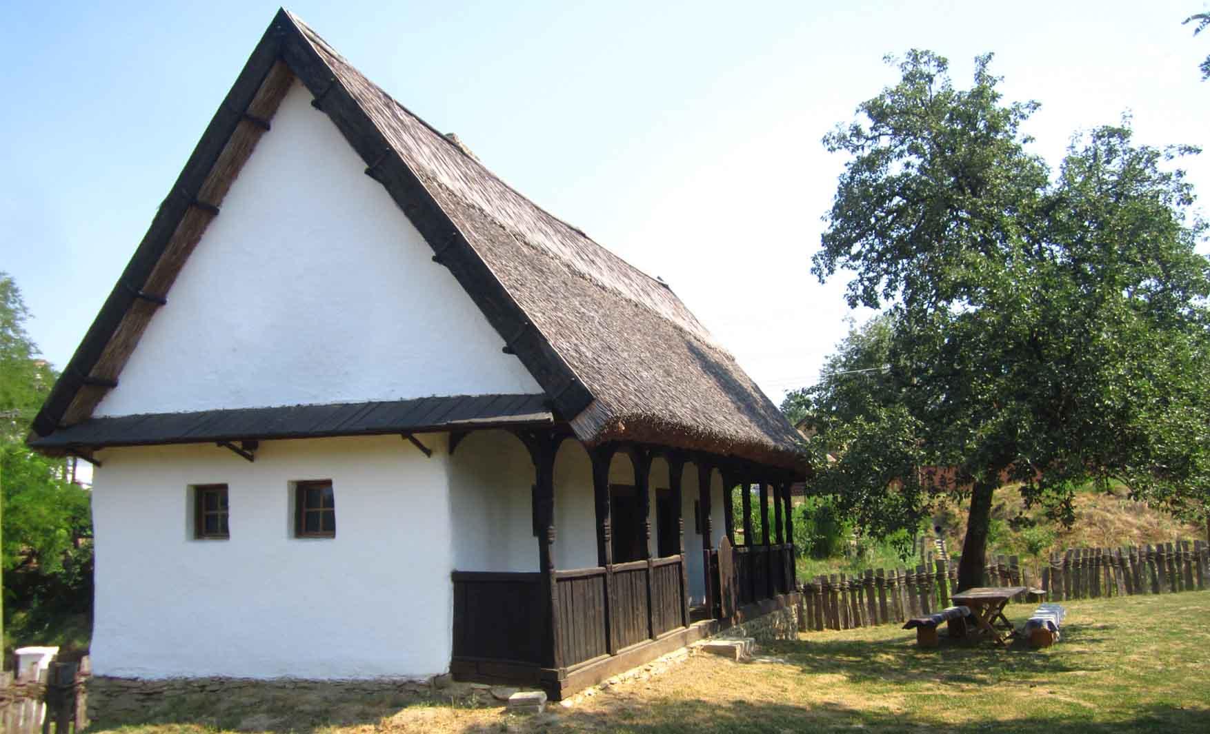 10 Nestin Muzej na otvorenom kuca Savica