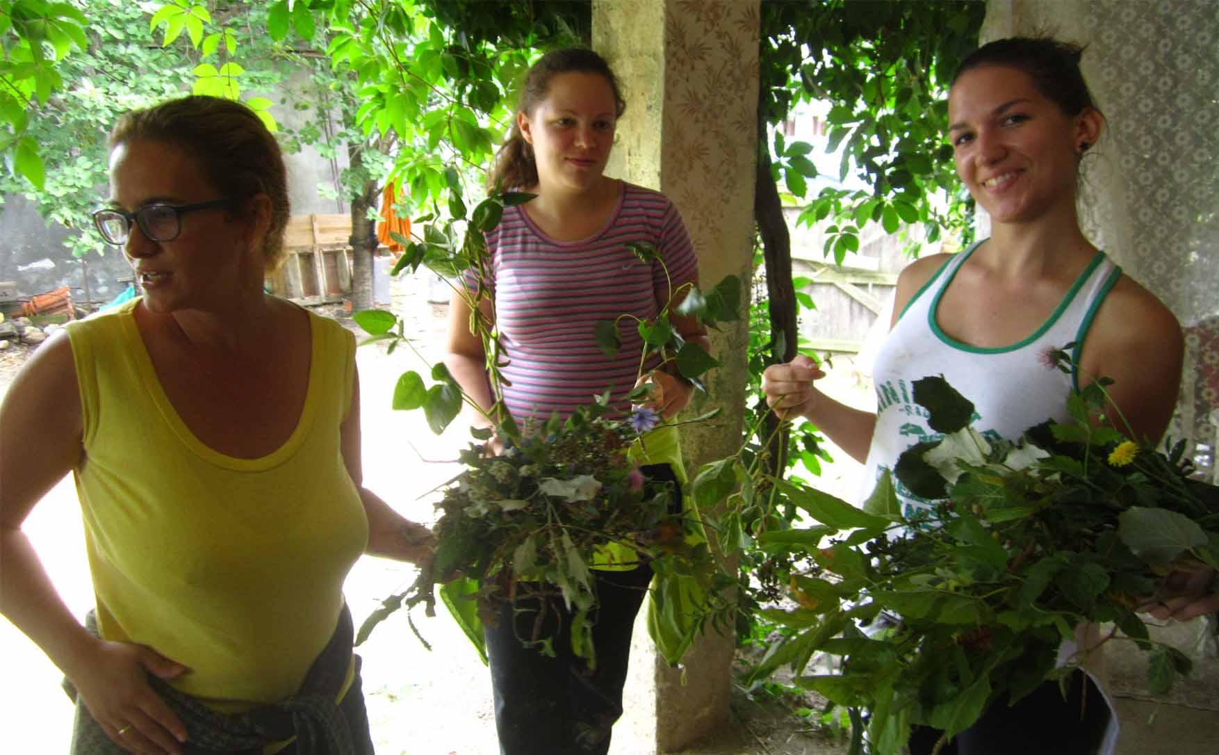 15 kamp zemljane gradnje II biljke s brega