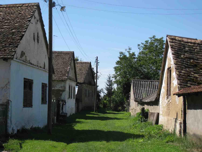 03 zemljana arhitektura Vojvodine